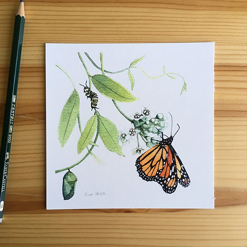Monarch with Twinevine small print