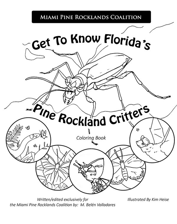 Get to Know Florida's Pine Rockland Critters colorng book illustrated by Kim Heise