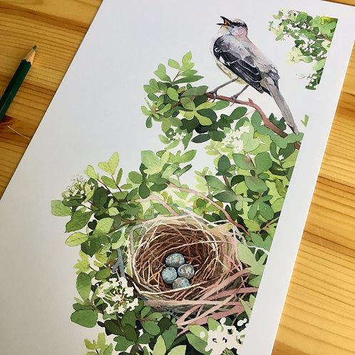 Mocking Bird and Walter's Viburnum small print