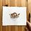 Thumbnail: Rim Rock Crowned Snake and Deltoid Spurge original watercolor