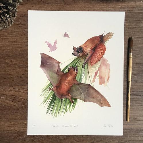 Florida Bonneted Bat limited Print small print