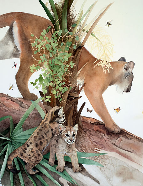 Saw Palmetto Florida Panther Relationship watercolor painting by Kim Heise