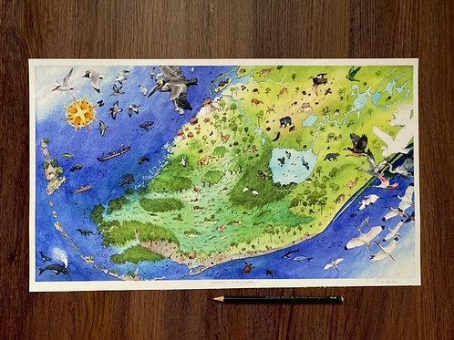 Historic Everglades Map