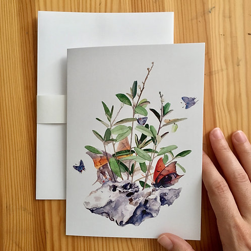 Pineland Croton large card