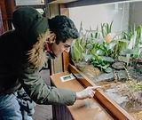 Frog high five - Saif Samari.jpg