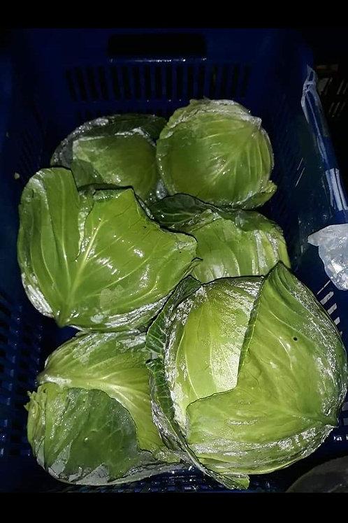 Repollo Verde kilo