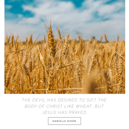 The devil has desired to sift the body of Christ like wheat, but Jesus has prayed