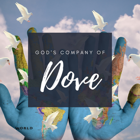 God's company of Doves