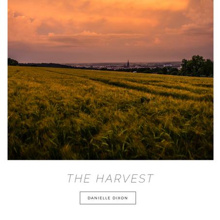 Prophetic Whisper | The Harvest
