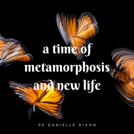 A Time of Metamorphosis and New Life