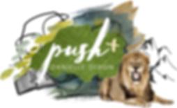push + concept.png