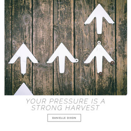 Your Pressure is Producing a Strong Harvest