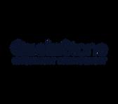 QuoinStone IM logo - BP blue.png