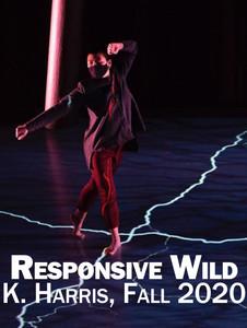 Responsive Wild