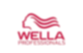 Wella hair products
