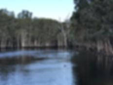 Lagoon at Underwood Park