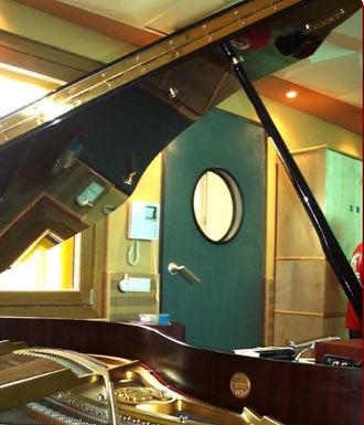 Porte acoustique 54dB Métalique