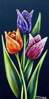 """Tulips #1241 (8"""" x 16"""")"""