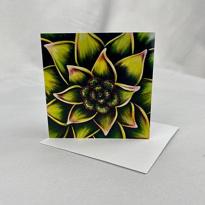 Mini Cards - Succulent