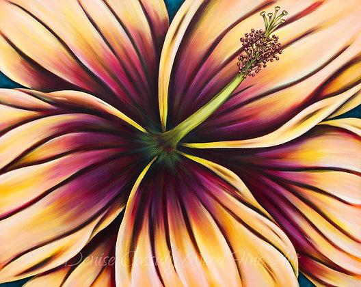 """Hibiscus Sunrise #692  (50"""" x 40"""")"""