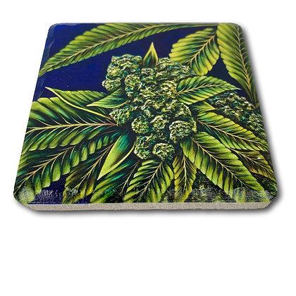 Coaster - Cannabis #6001