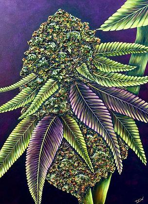 Cannabis Art #6000