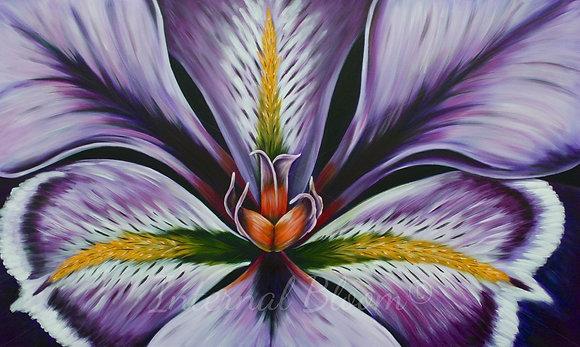 "Iris #425  (36"" x 60"")"