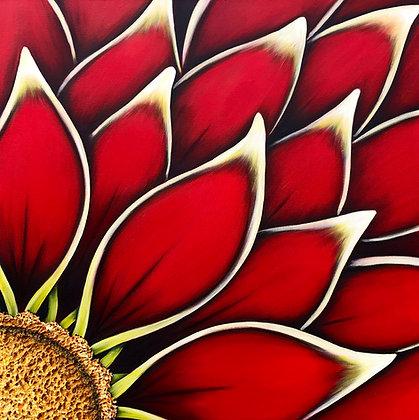 """Red Dahlia #701  (30"""" x 30"""")"""
