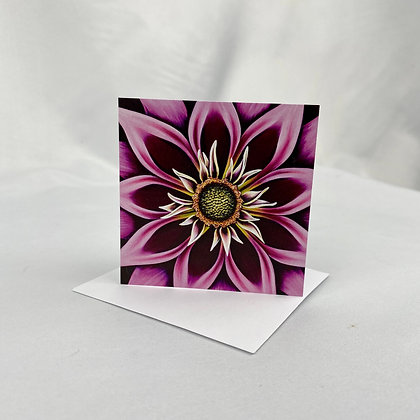 Mini Cards - Spellbound