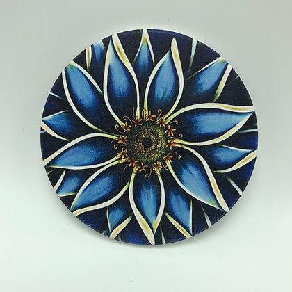 Coaster - Blue Zinnia #02