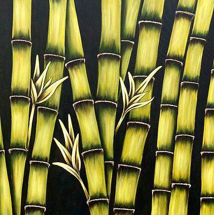 """Bamboo #1169 (40"""" x 40"""""""