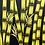 """Thumbnail: Bamboo #1169 (40"""" x 40"""""""