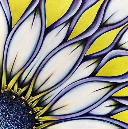 """African Daisy #945   (24"""" x 24"""")"""
