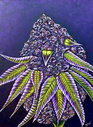 Cannabis Art #6002