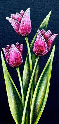 """Tulips #1246 (8"""" x 16"""")"""
