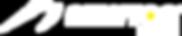 Newton Logo - White for Website.png