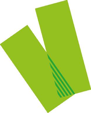 KLEURMAKERS - verf groen.png