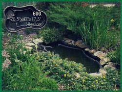 Pond 600