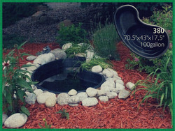 Pond 380