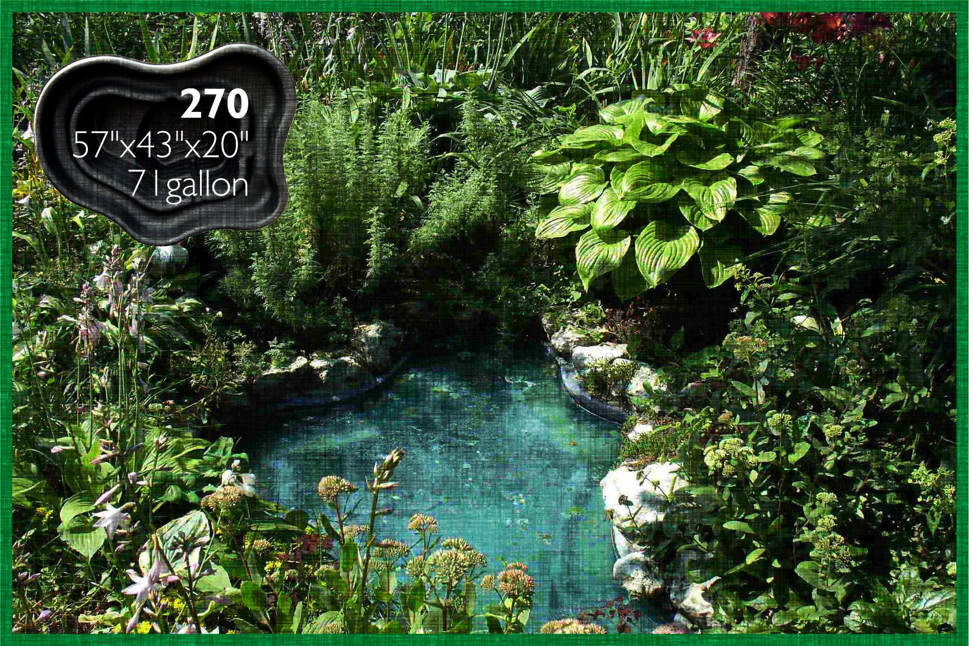 Pond 270
