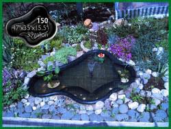 Pond 150