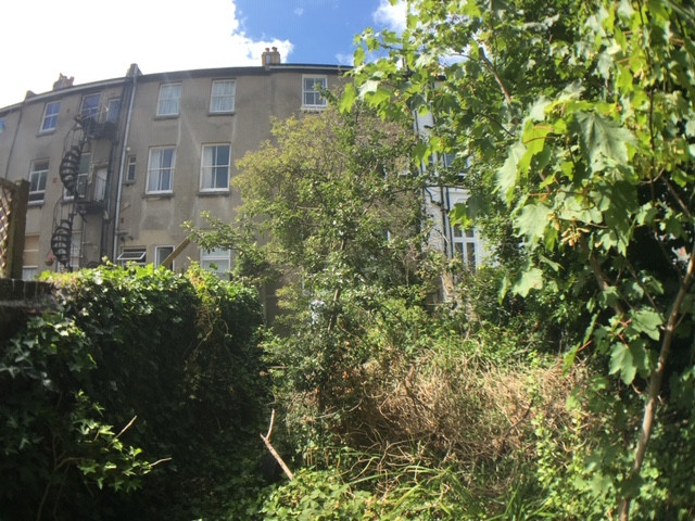Tisbury Road Garden BEFORE.jpg