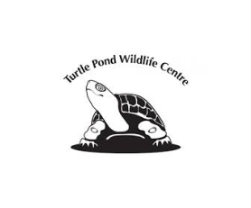 Turtle Pond WC.png