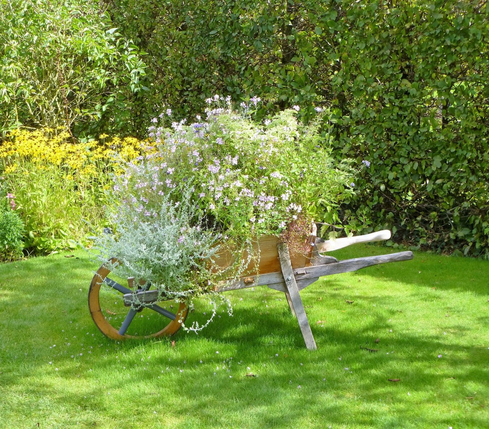 wheelbarrow_flowers_nature_gardening_gar