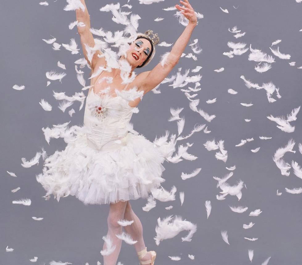Trocks-swan-feathers.jpg