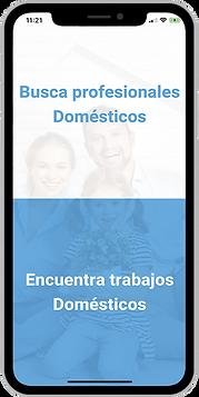 tipo_de_usuario_español.png