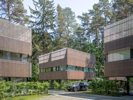 """VP de empresa finlandesa sobre a madeira: """"Quando uma árvore é cortada, dez outras são plantadas"""""""