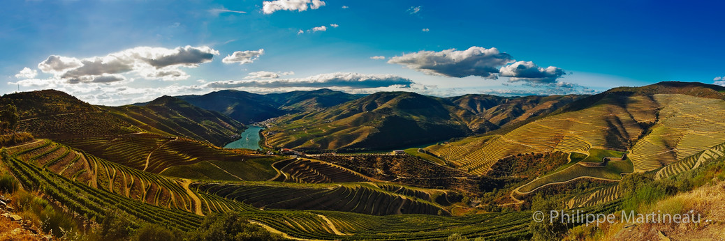 Portugal Porto Symington Valée Douro