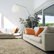 Carpet Inspiration