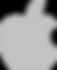 Gray Apple Logo.png